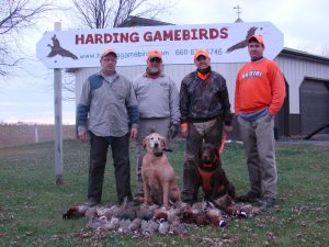 Quail Hunting in Missouri